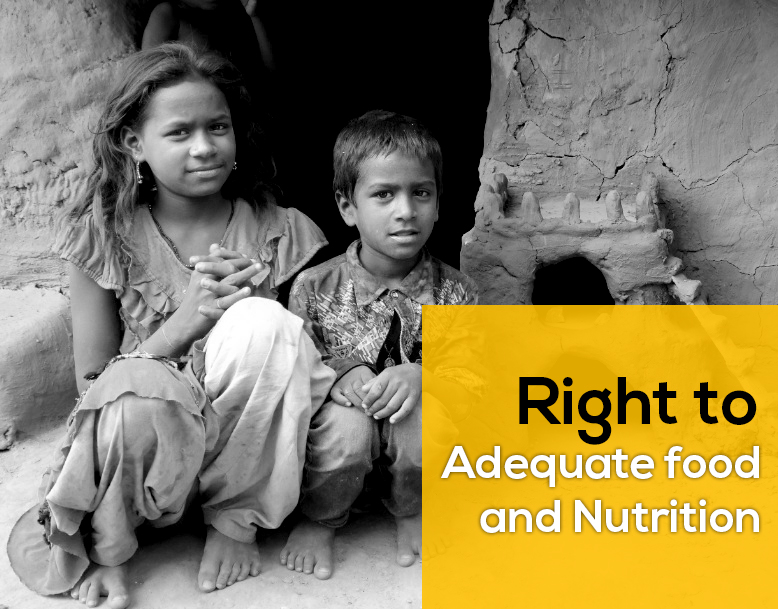 Plant to eMpower - NGO for Health and Nutrition